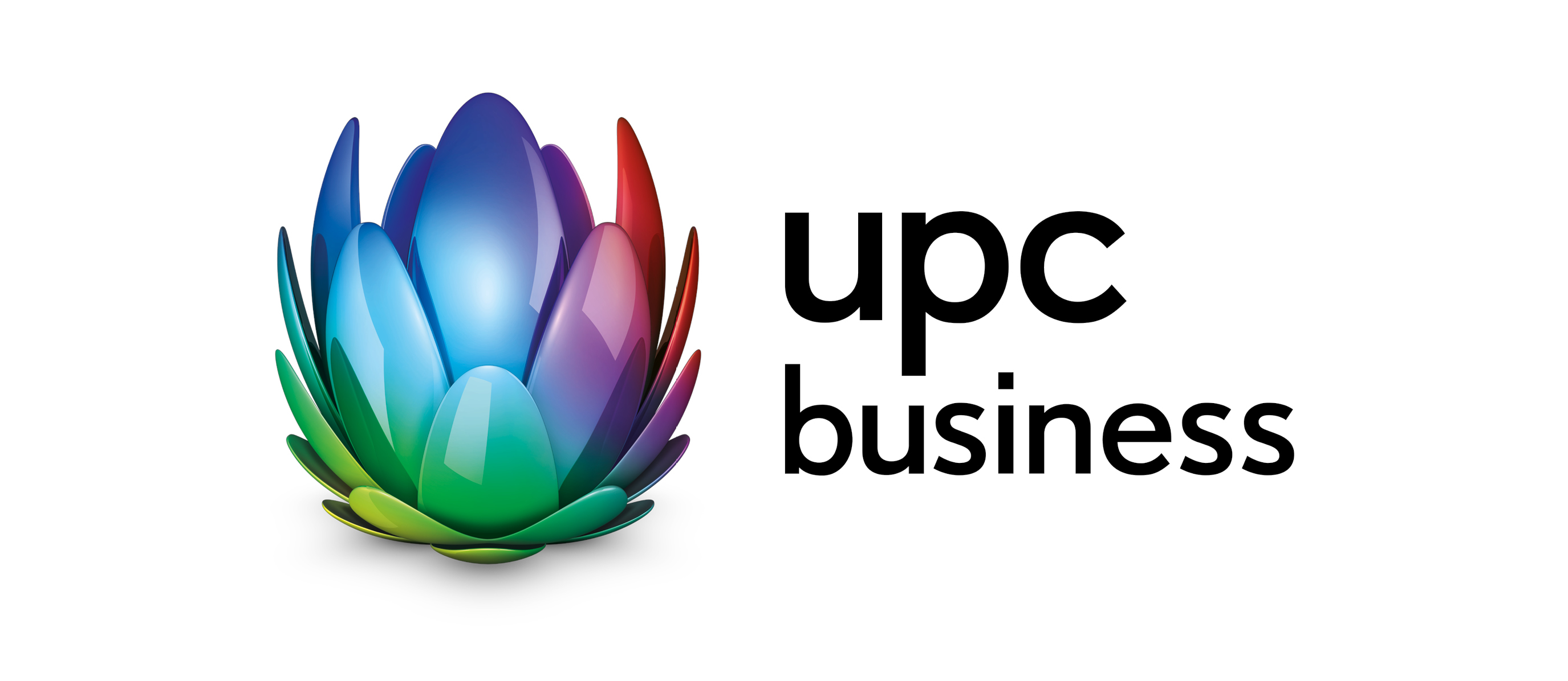 Logo UPC Website